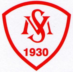 SV Moslesfehn Emblem