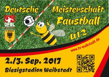 DM-U12-Waibstadt-Logo